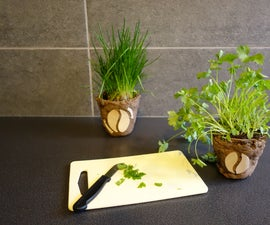 Biodegradable flower pots out of coffee grounds!