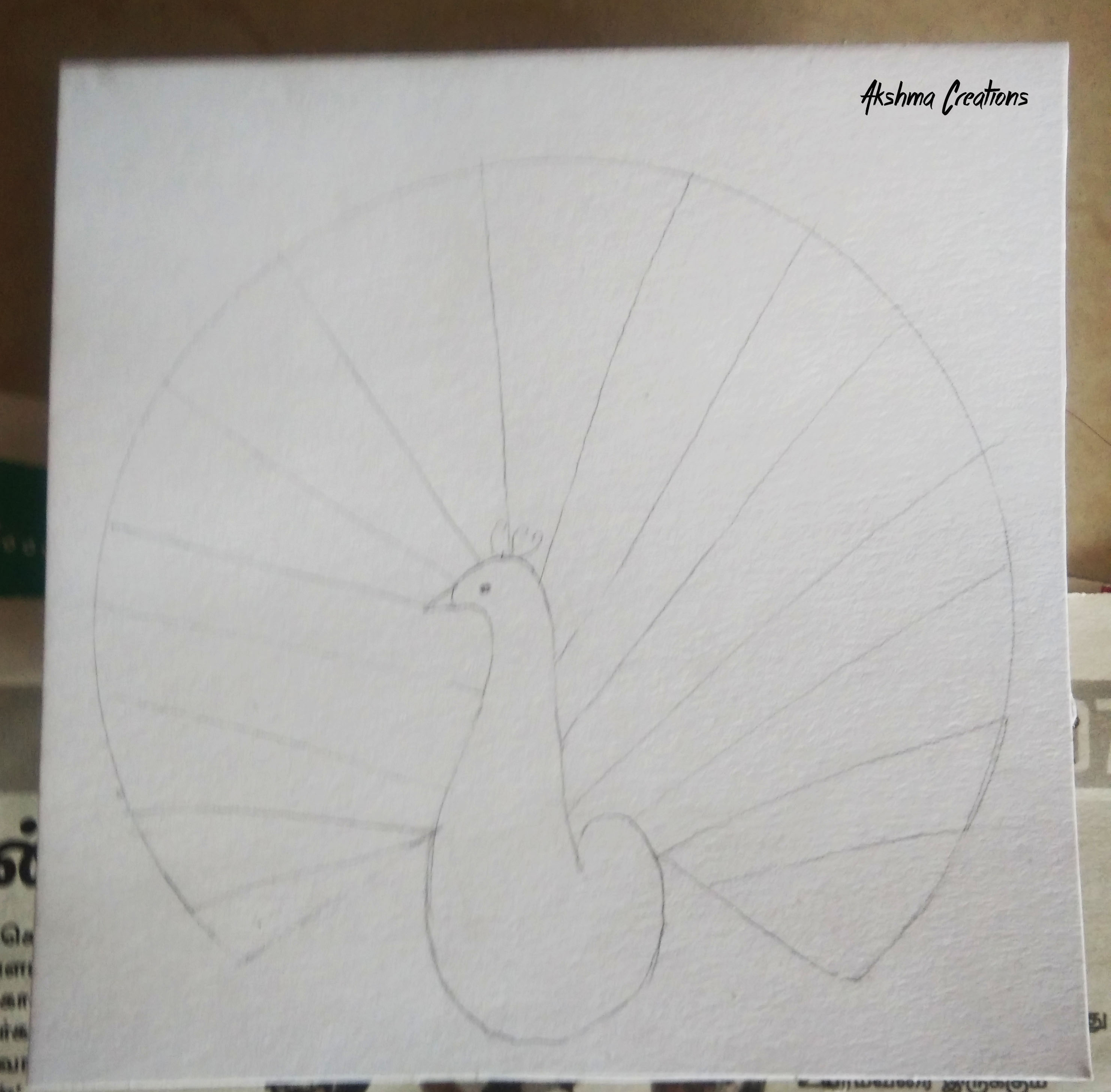 Picture of Draw the Outline of Peacock