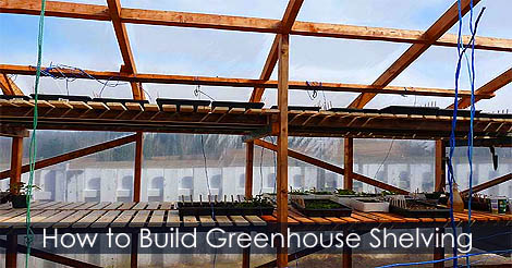 Picture of Step 11: How to Make Greenhouse Shelving