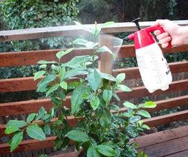 Organic pesticide and fungicide spray