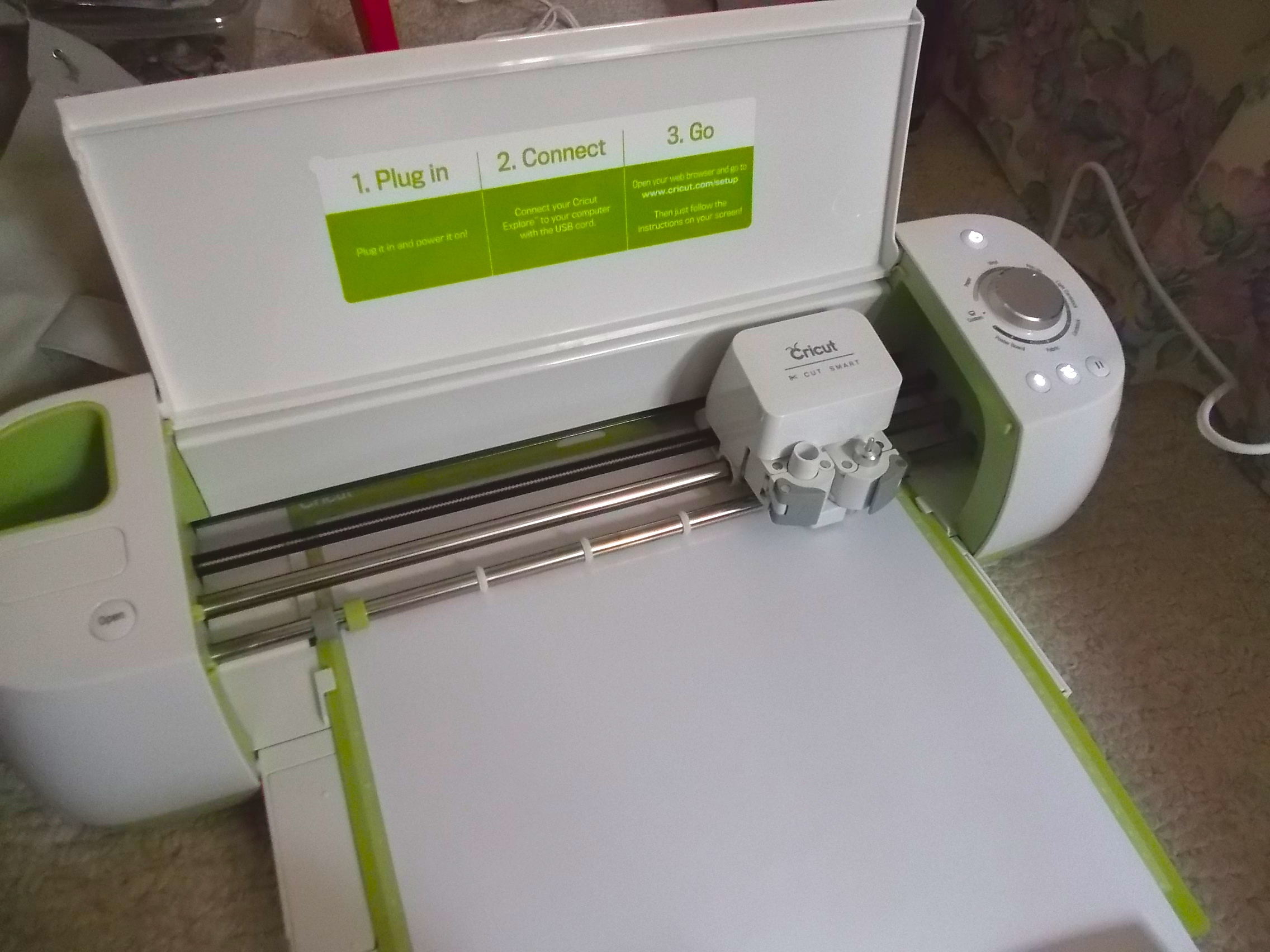 Picture of Embellishment: Cricut Cutting and Ironing