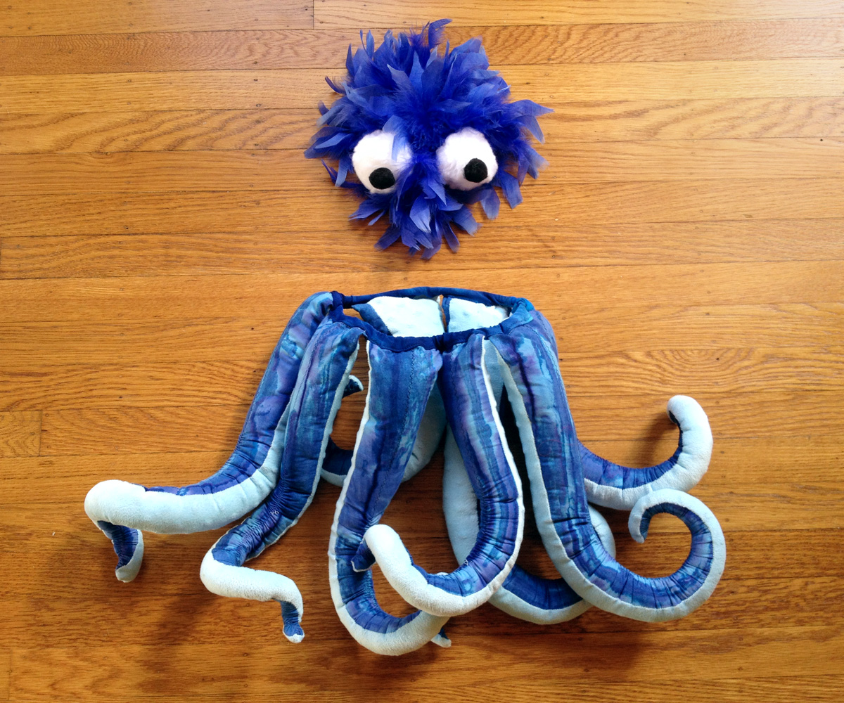 Picture of DIY Octopus Costume