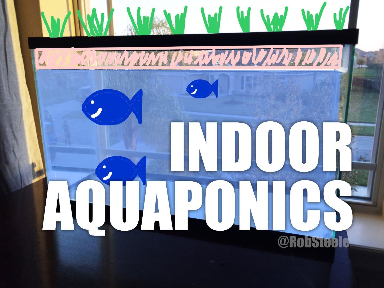 Picture of Indoor Aquaponics
