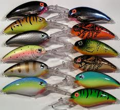 Picture of Part 1: What Is a Hard Bodied Crank Bait?