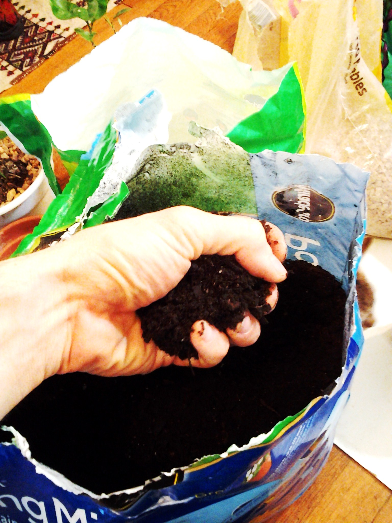 Picture of Mix Soil