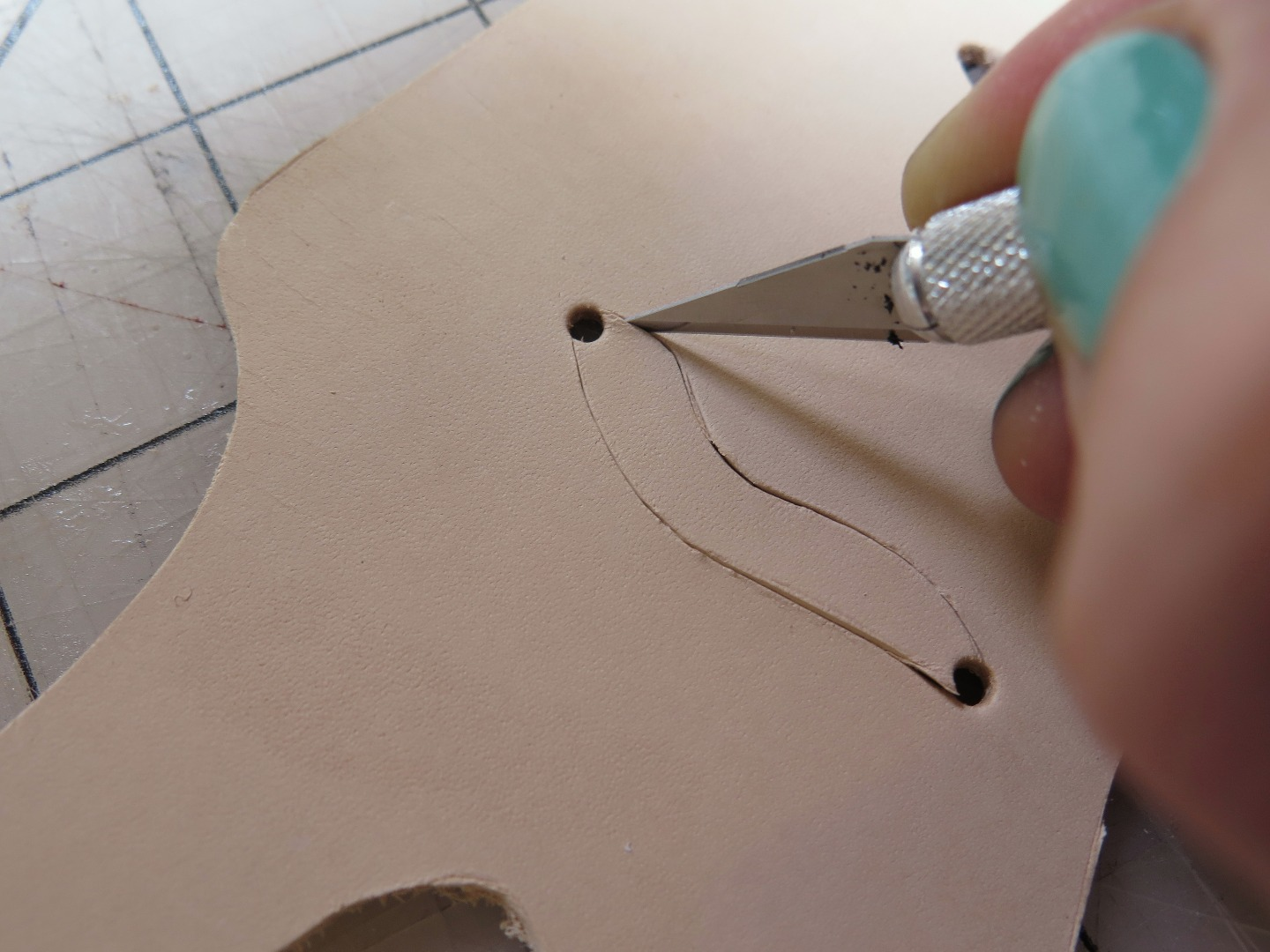 Picture of Cutting Out the Octopus