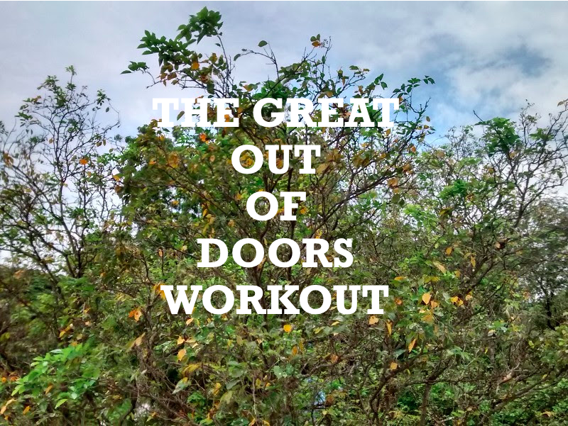 Picture of The Great Out of Doors Workout