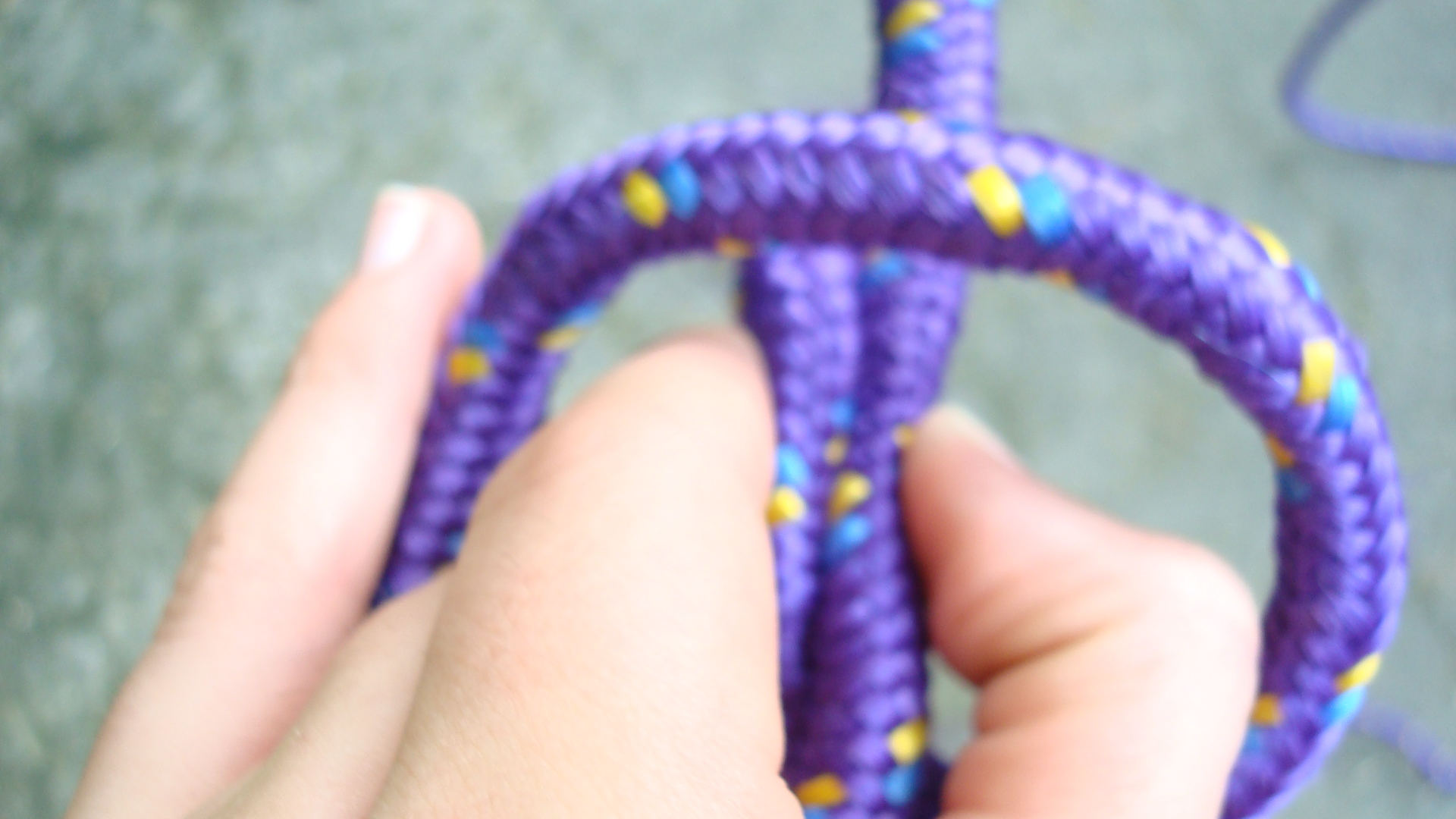 Picture of The Knots