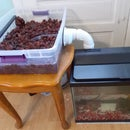 Aquaponics with Existing Aquarium