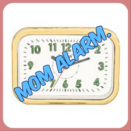 Picture of Alarm.