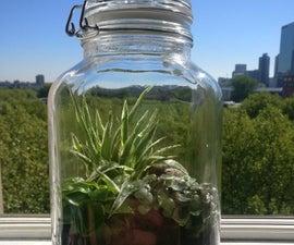 Do It Yourself Sustaining Ecosystem