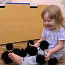 Susuwatari - Soft, Cute and Easy Toy!