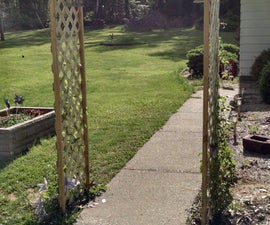Build an Arbor for Your Wife.