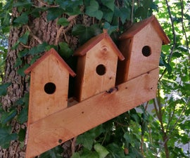 How to Build a Norwegian Bird Condo from a 2X4