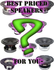 Selecting the Best Speaker for You and Your Munny Speakers!