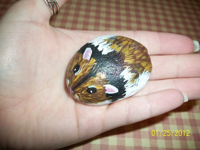 Painted Hamster Rock