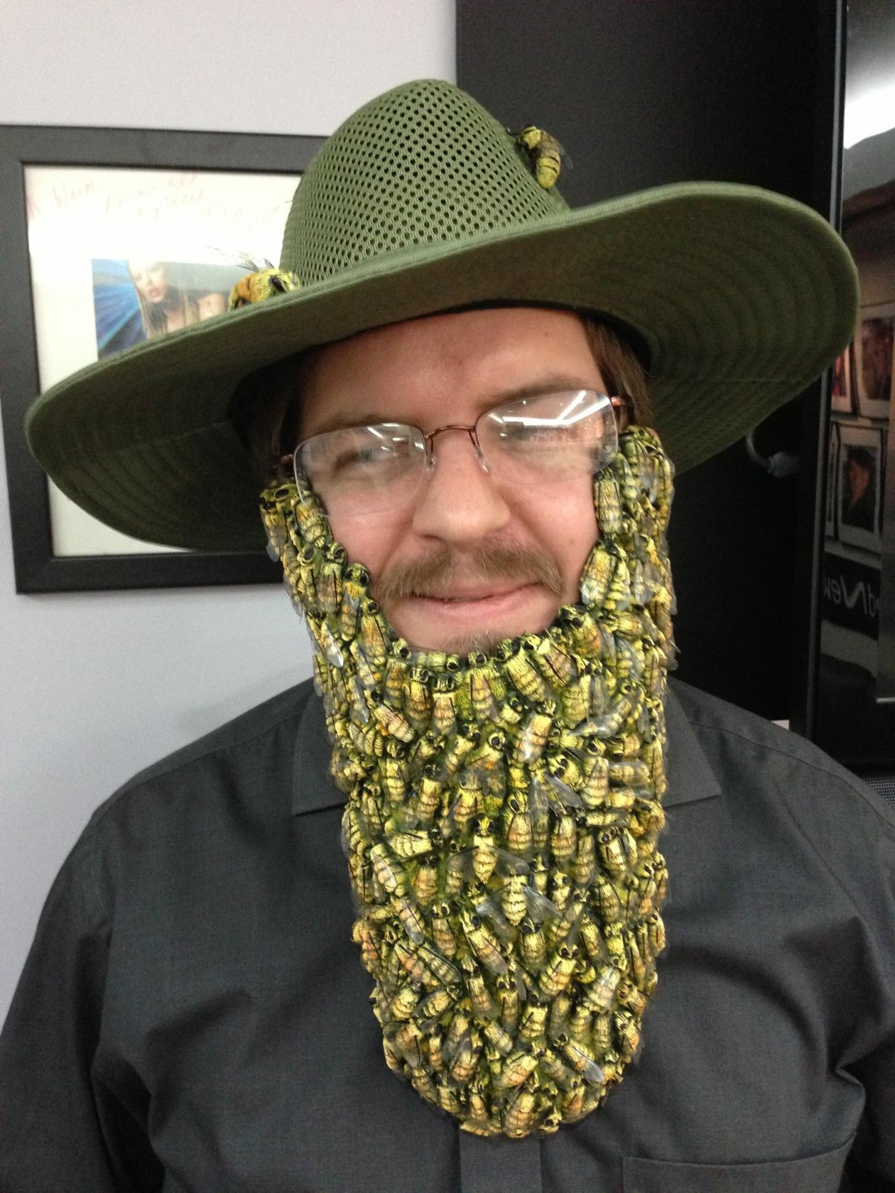 Picture of Beard of Bees Costume