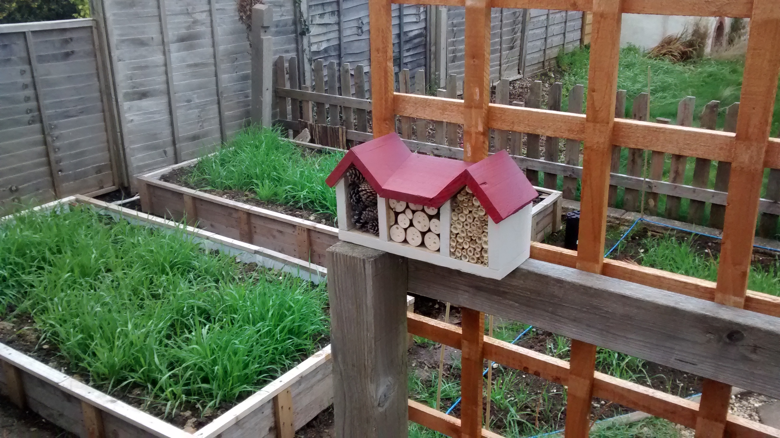 Picture of Insect/Bee House