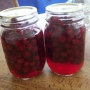 Fizzy Cranberries