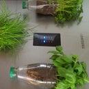 Magnetic fridge herb garden