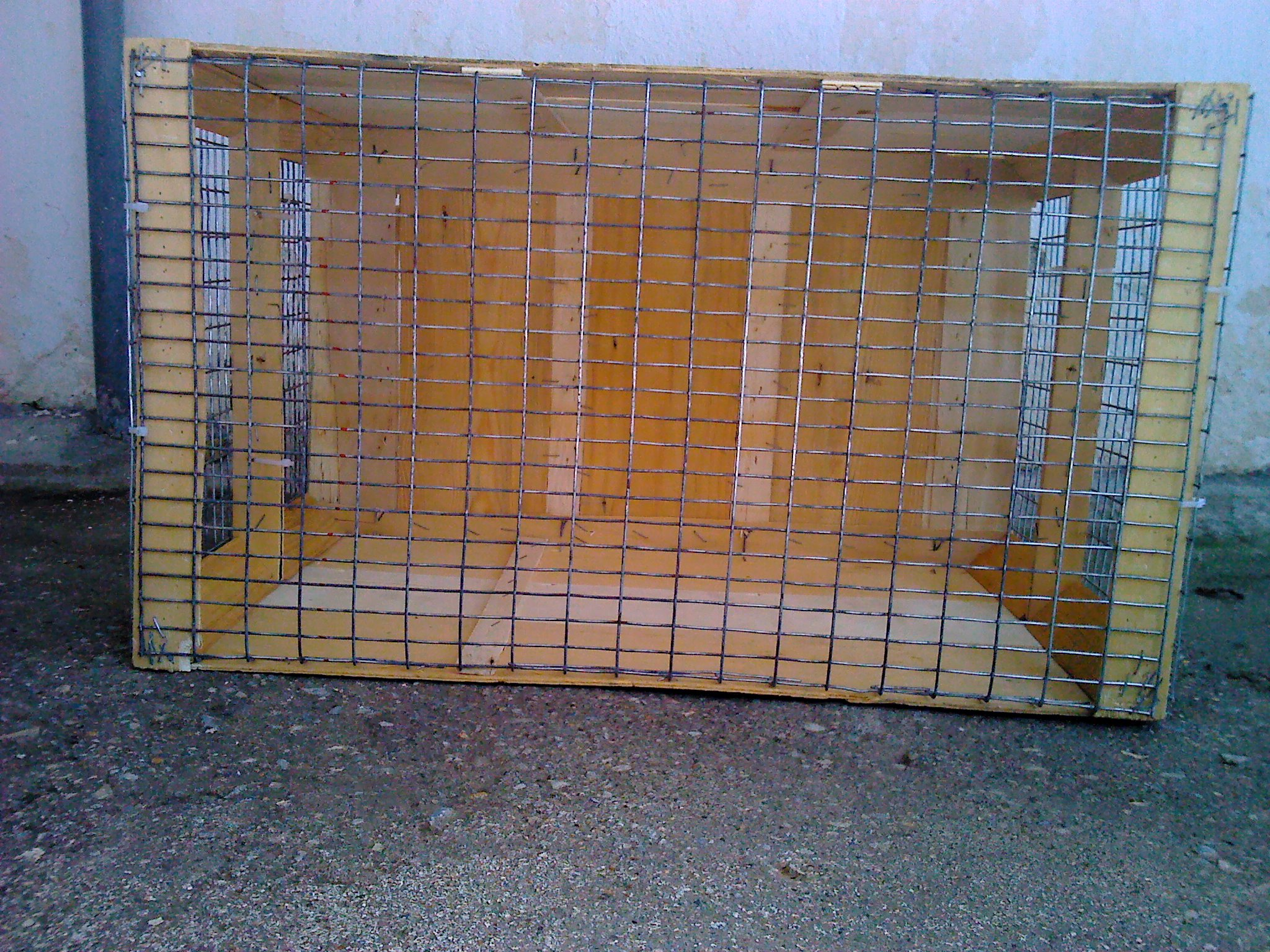 Picture of The Cage