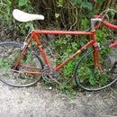 Old bike freewheel cleaning