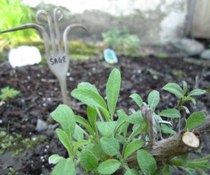 Silverware Plant Markers
