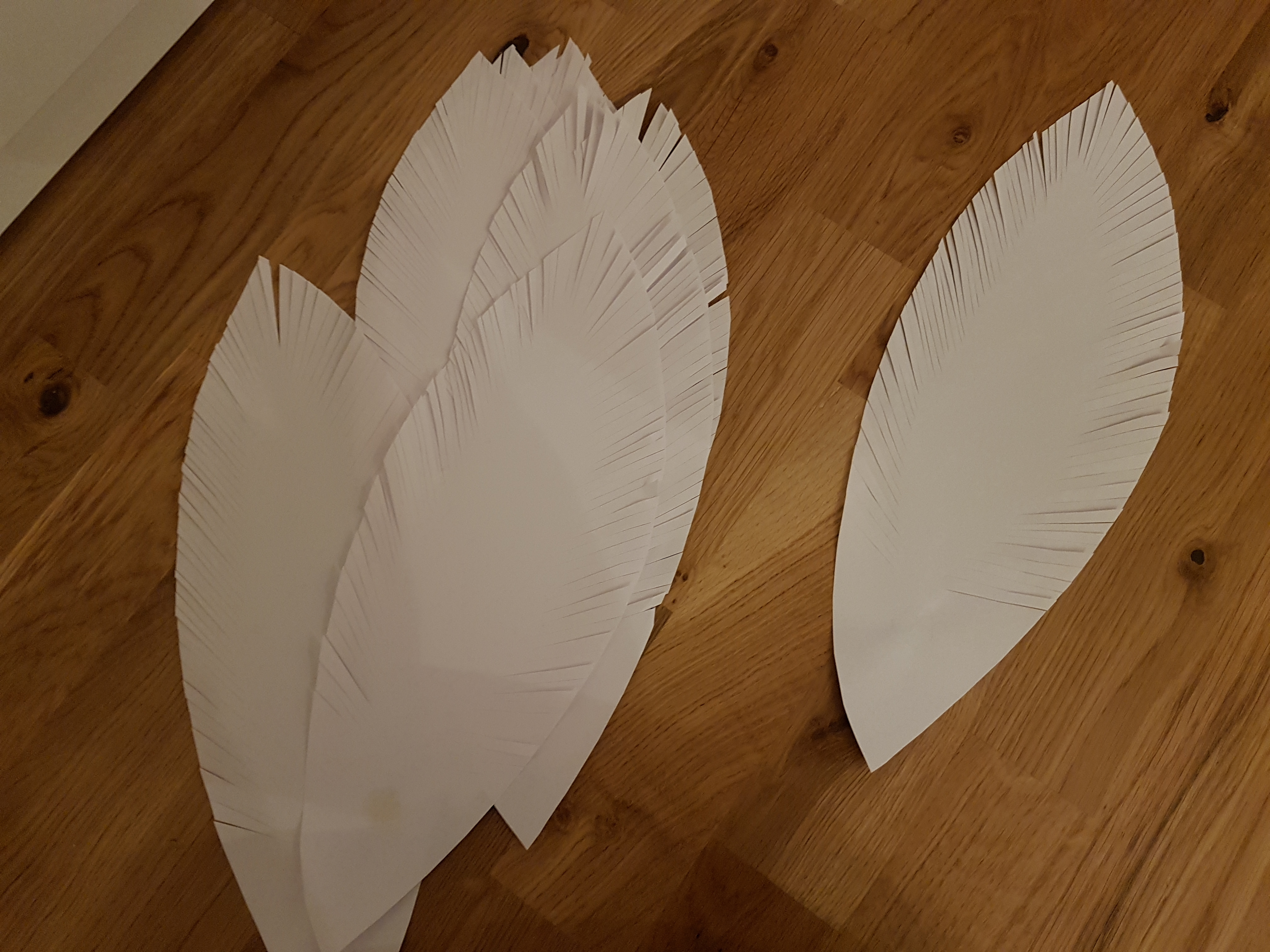 Picture of Cutting Feathers