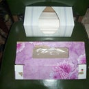 Don't Throw Away Your Tissue Boxes - Recycle Them