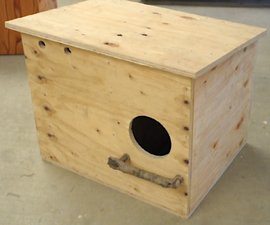 How to Build and Owl Nest Box (VIDEO)