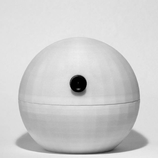 Picture of Autonomous Surveillance Camera