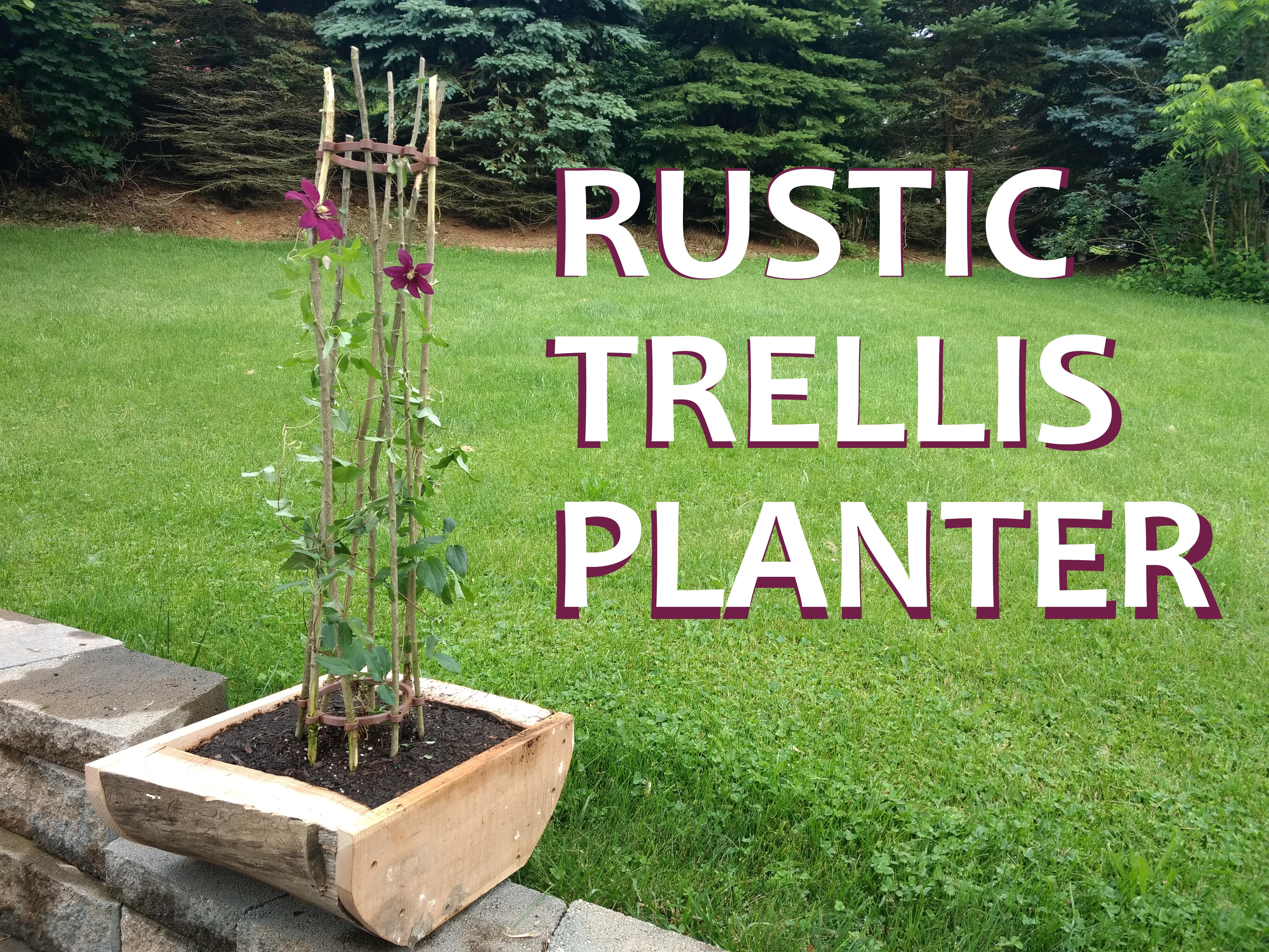 Picture of The Rustic Trellis Planter