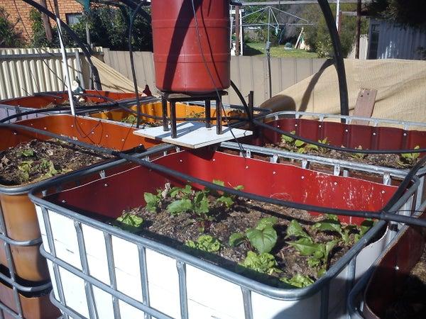 Vermiponic Garden