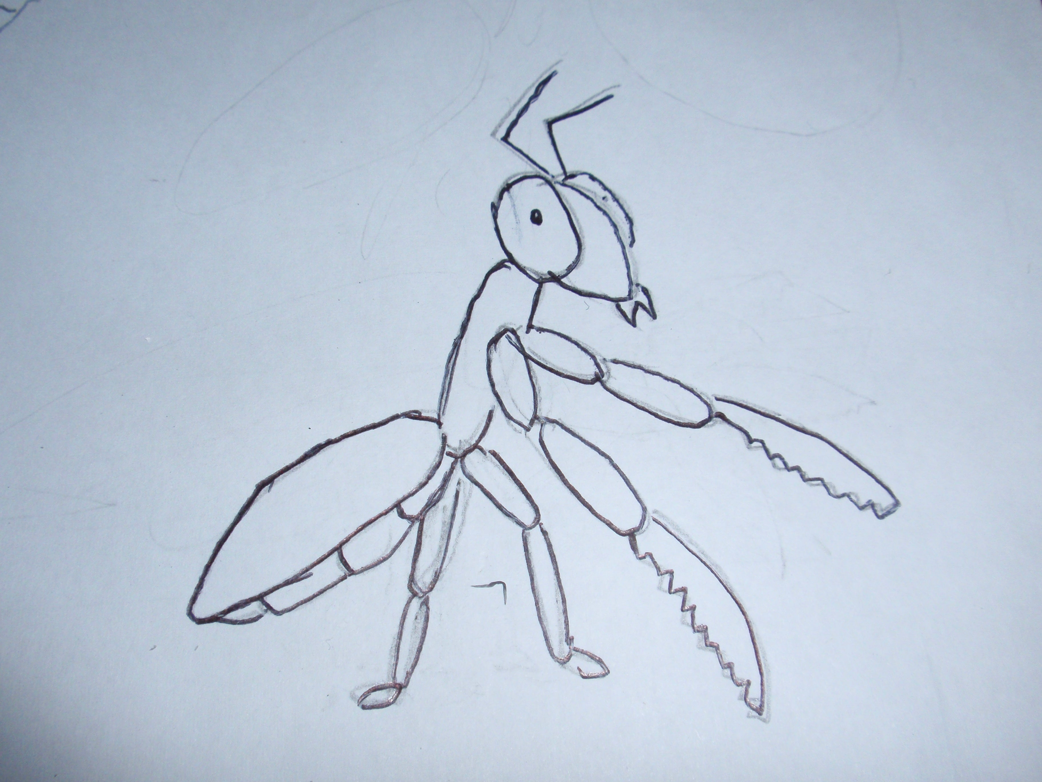 How To Draw Gary The Praying Mantis 4 Steps Instructables