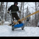 Homemade Dogsled
