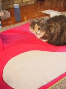 Free Pattern for Fish Cat House & Tips
