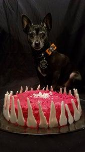 Pumpkin and Applesauce Puppycake (dog Friendly)