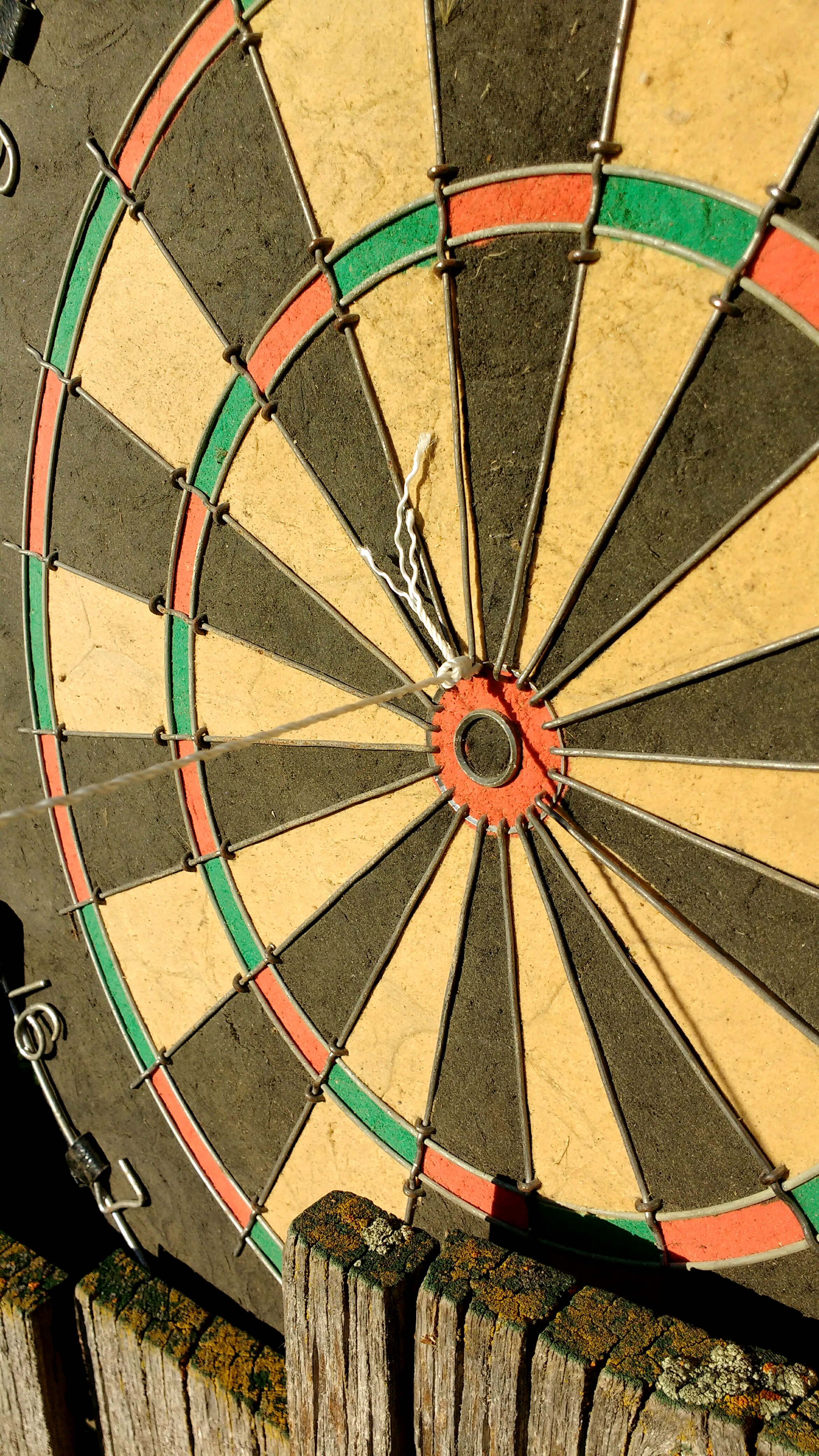 Picture of Hit the Bullseye in Darts (Even If You're Visually Impaired!)