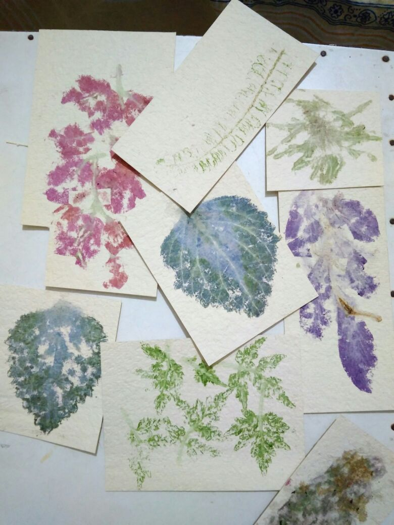 Picture of Eco Printing on Paper