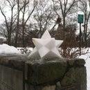 Stellated Snowdecahedra