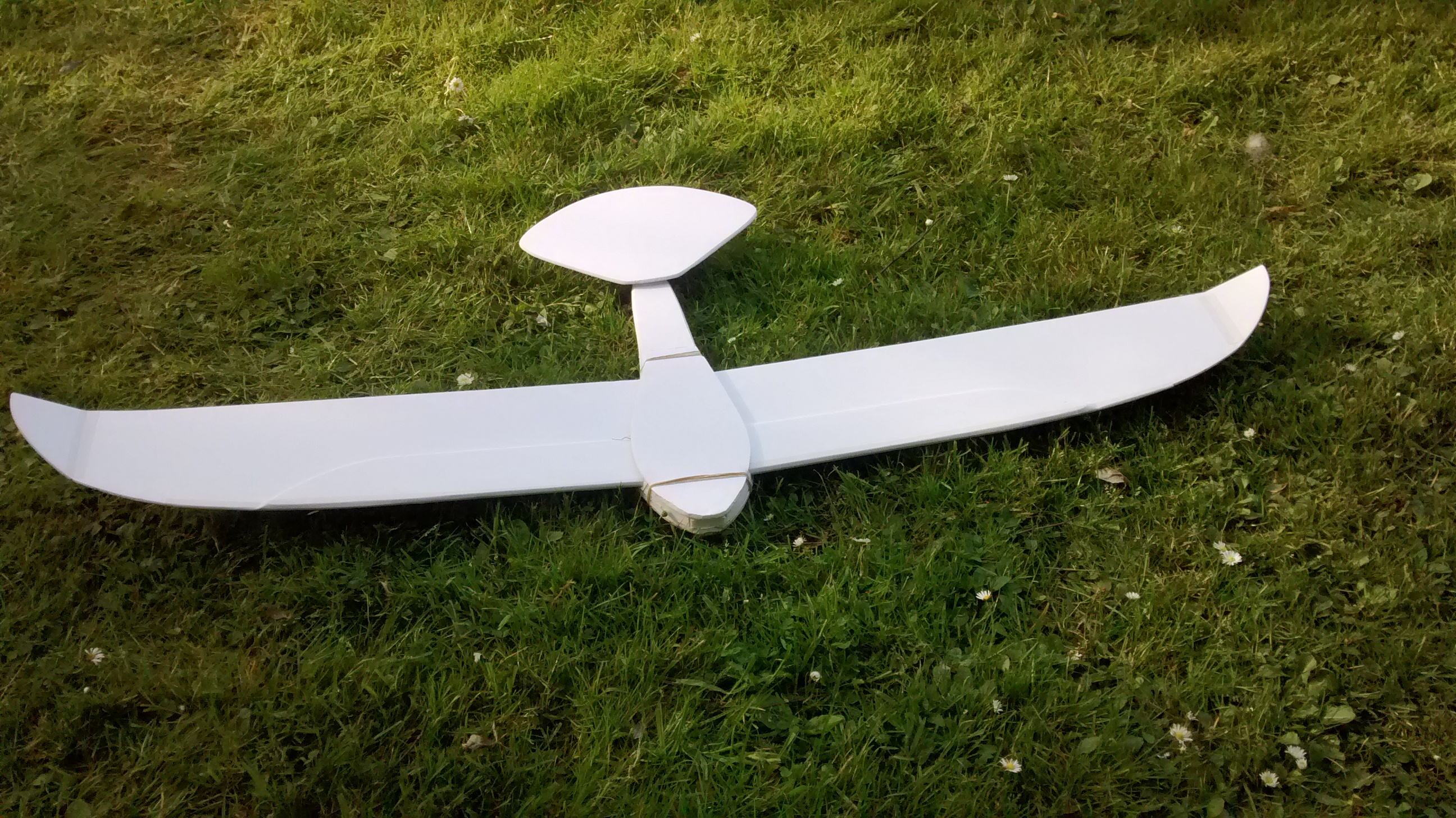 Picture of Enjoy Your Eagle-like Glider