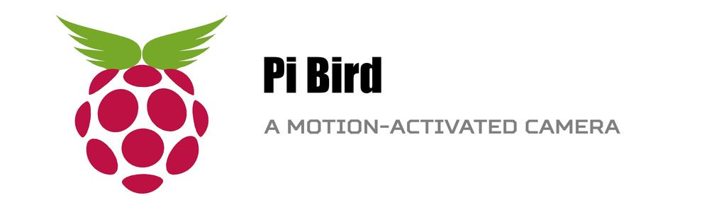 Pi Bird