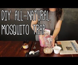 The Easiest Mosquito Trap...(Under 1 Buck)