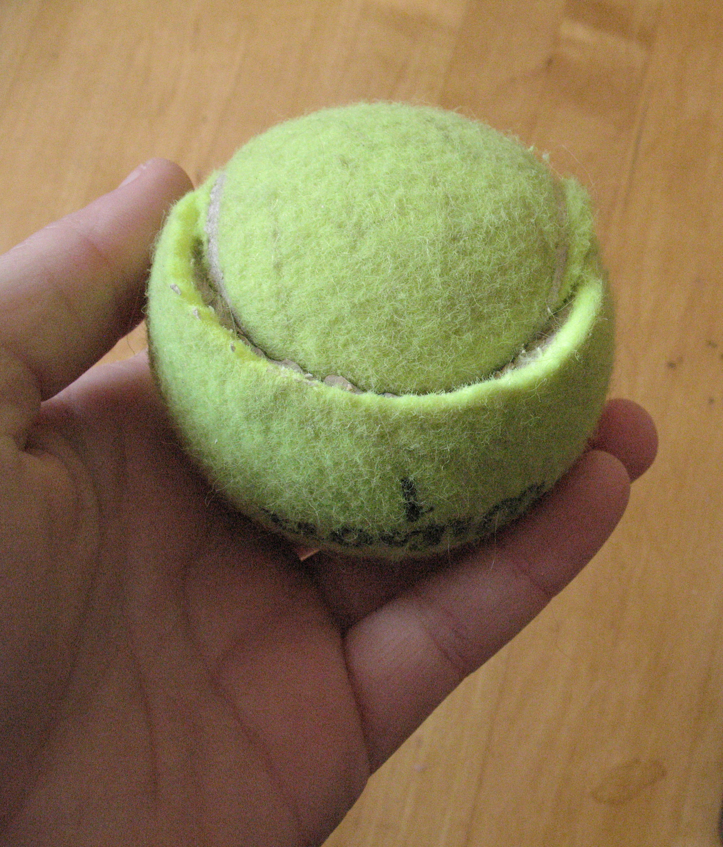 easy amp cheap dog toy all