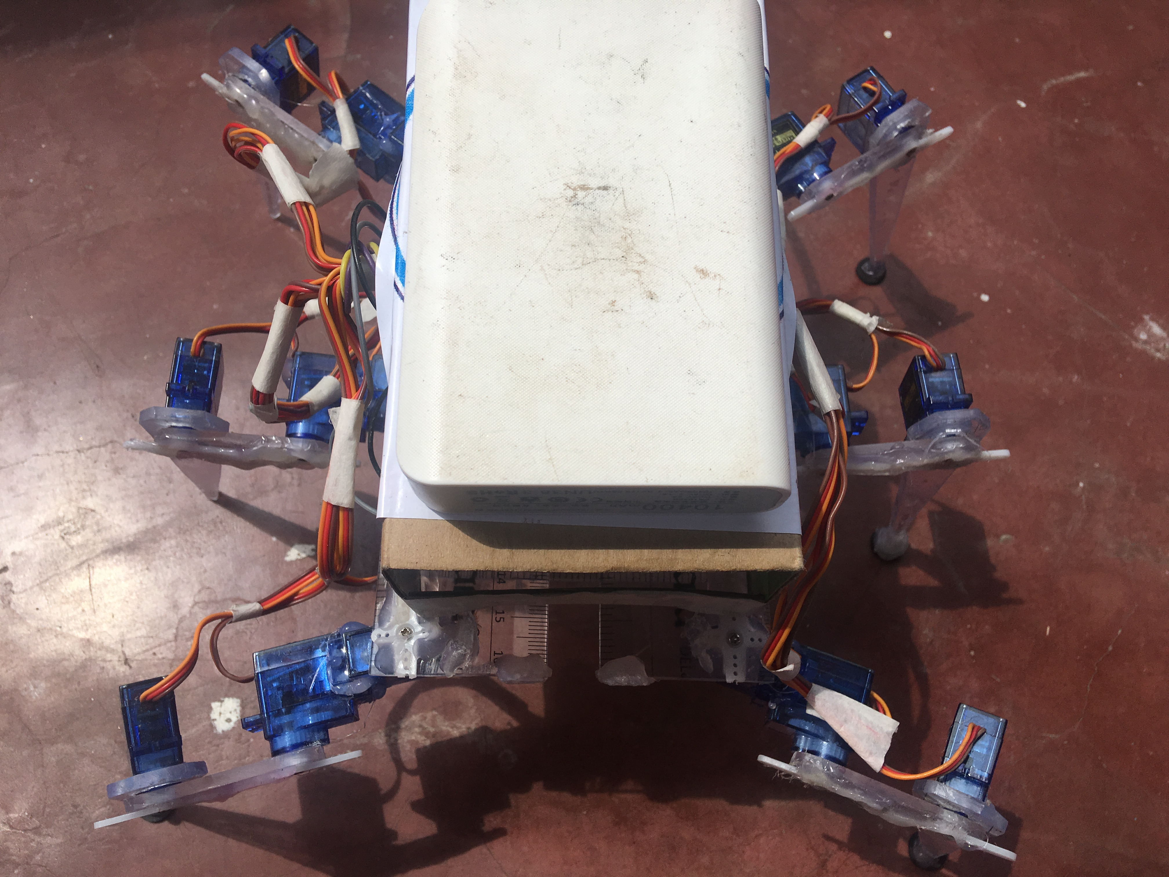 Picture of Hexapod Robot With Ruler Body Parts