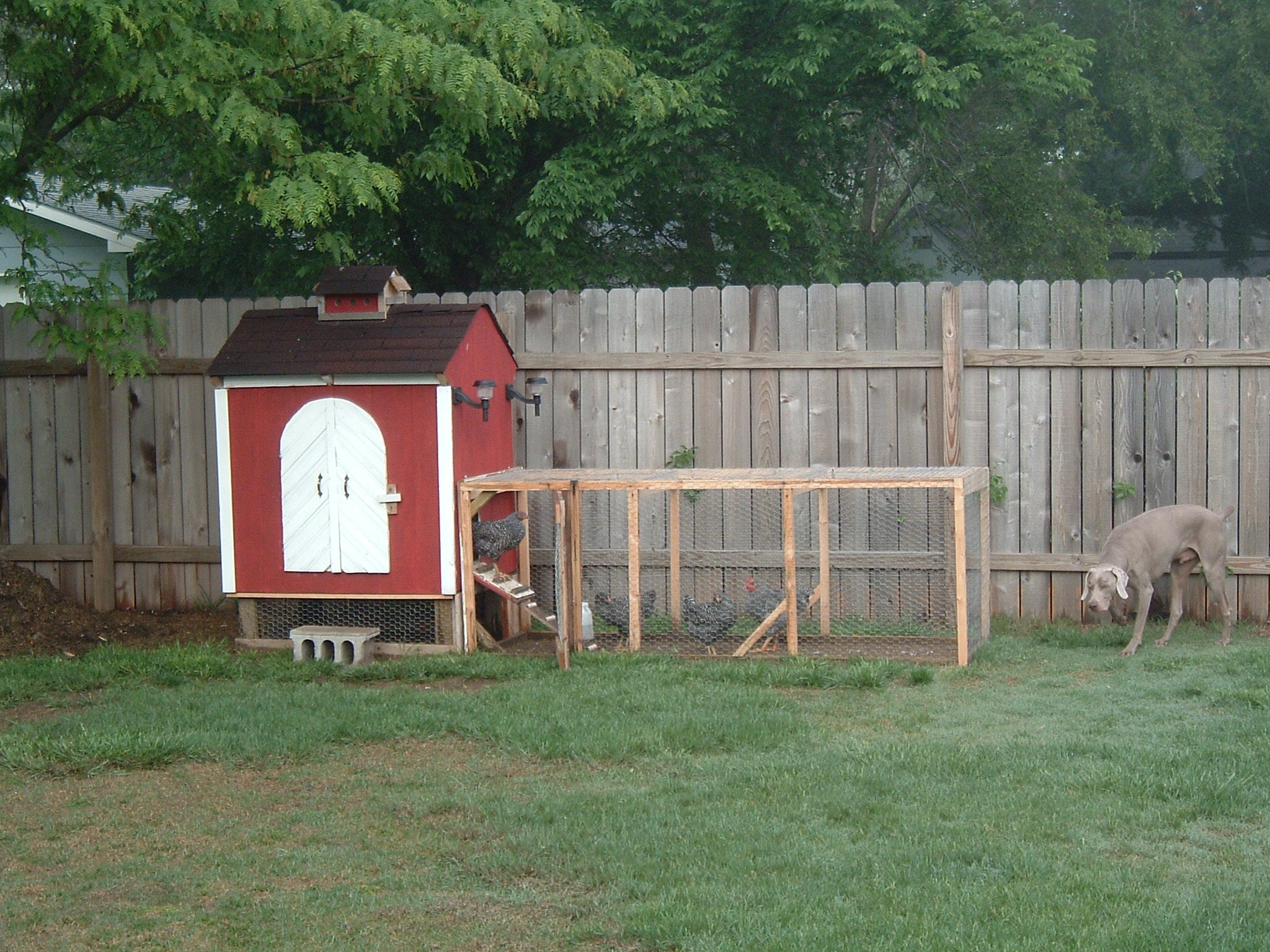 Backyard Chicken Coop 6 Steps With Pictures Instructables