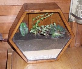 Easy Hexagonal Terrarium