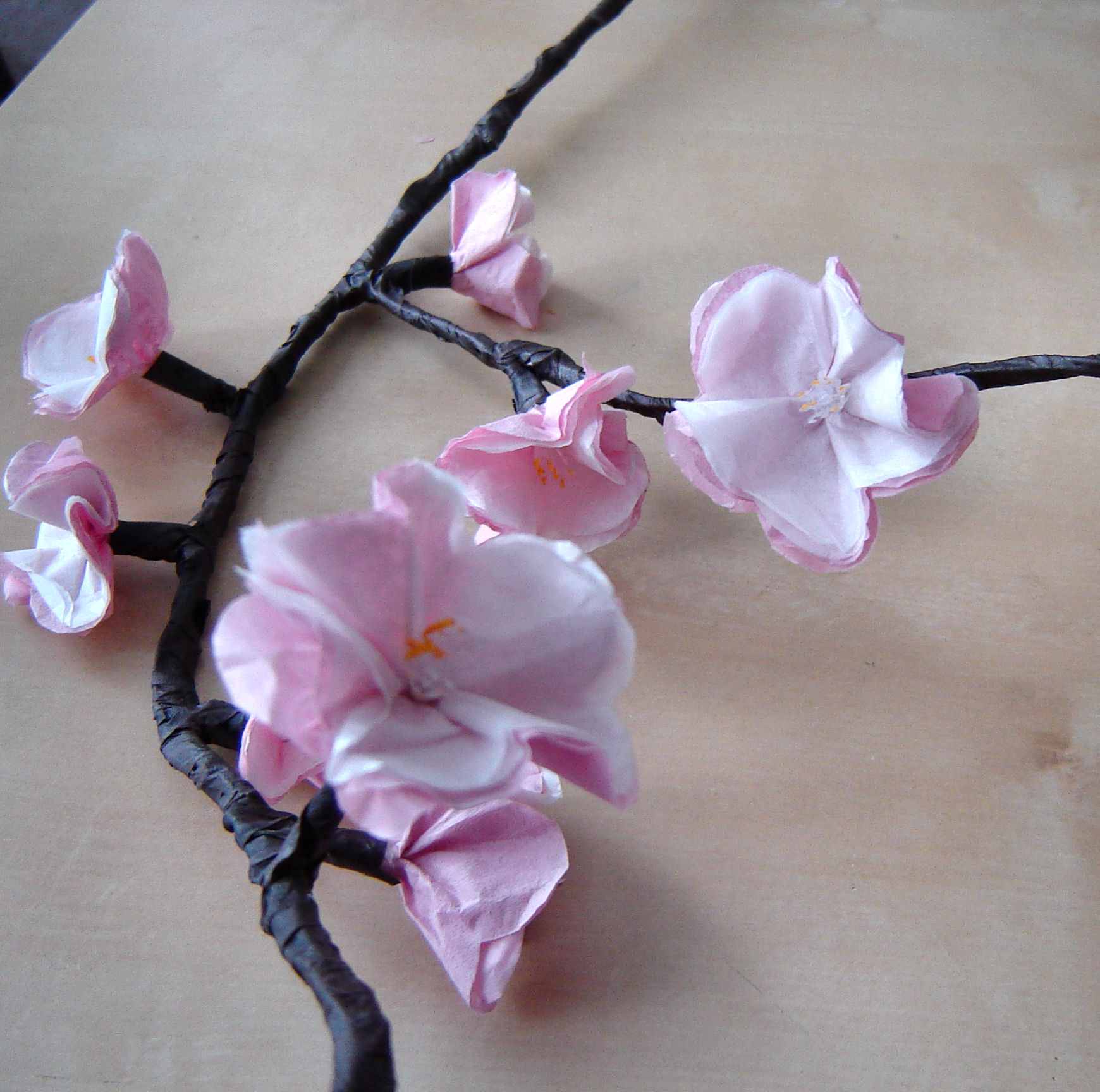 Picture of Wrapping the Branch