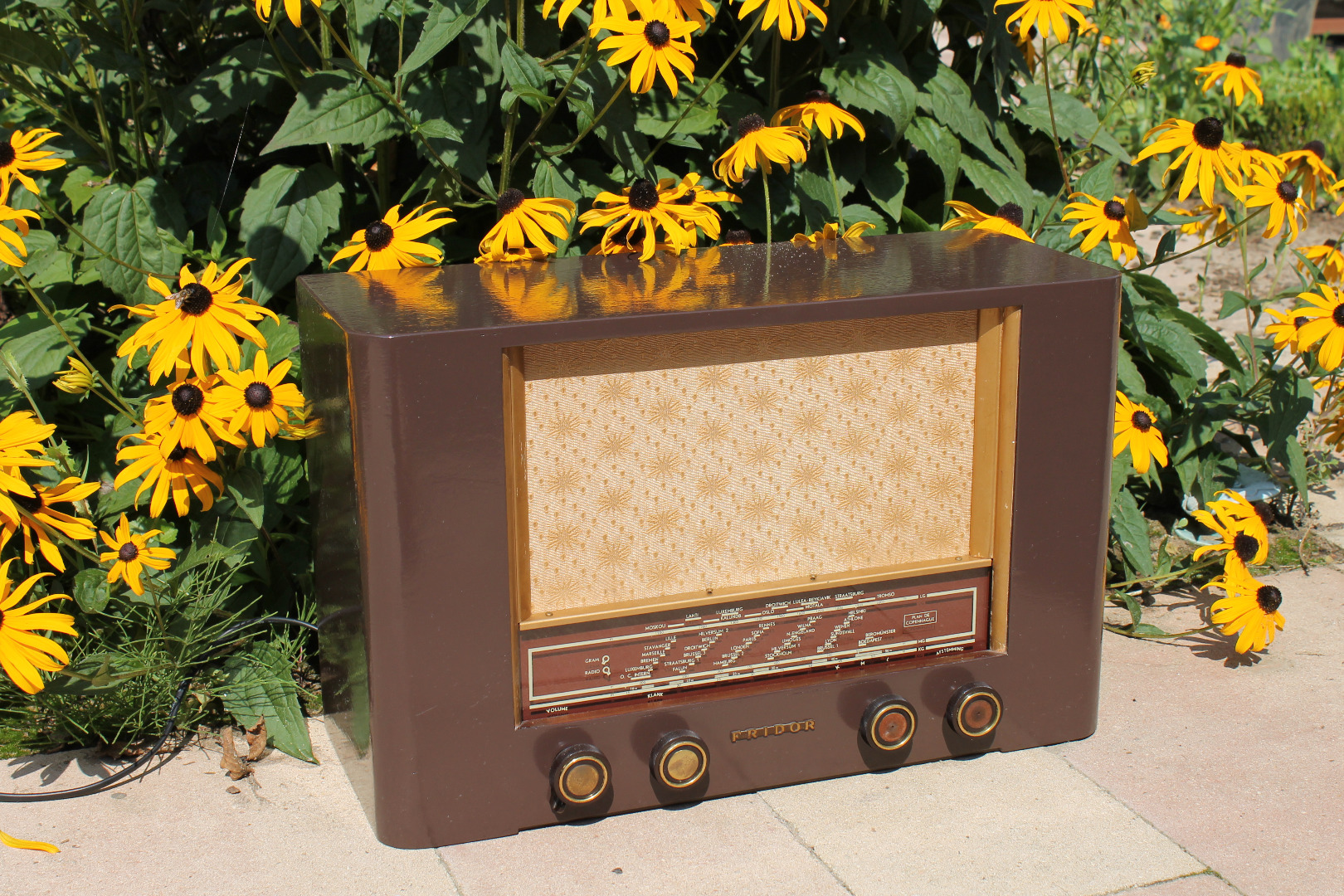 Picture of Old Radio Transformation