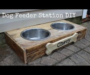 Dog Feeder Station DIY